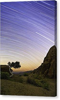 The Test Of Time Canvas Print by Basie Van Zyl