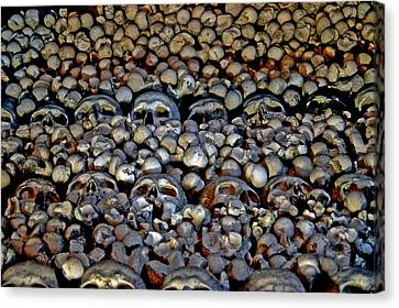 The Texture Of Skulls And Bones. Texture Death. Canvas Print by Andy Za
