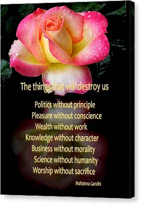 Canvas Print featuring the photograph The Things That Will Destroy Us by George Bostian