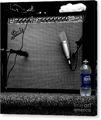 The Thirst Of Sound Canvas Print by Steven Digman