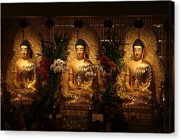 The Three Buddhas Canvas Print by Brian Davis