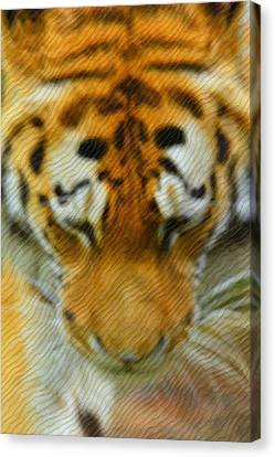 The Tiger Hunt Canvas Print - The Tiger by Tommytechno Sweden
