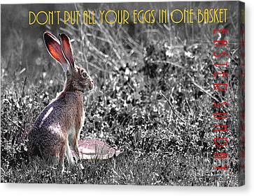 The Tortoise And The Hare Dont Put All Your Eggs In One Basket Easter Sunday 40d12379 Bw Canvas Print by Wingsdomain Art and Photography