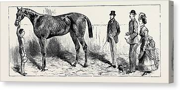 The Training Of A Racehorse At Home In The Stable Canvas Print by English School