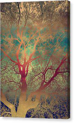 The Tree Called Beautiful Canvas Print by Gray  Artus