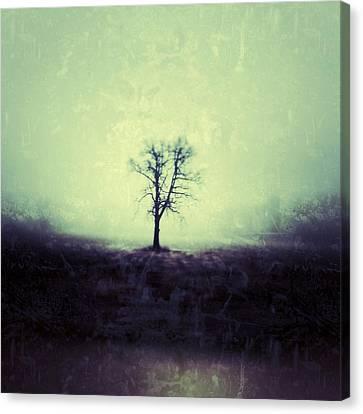 Winter Trees Canvas Print - The Tree by Jeff Klingler