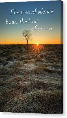 Sun Rays Canvas Print - The Tree Of Silence by Bill Wakeley