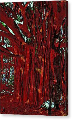 The Tree Spirit Canvas Print