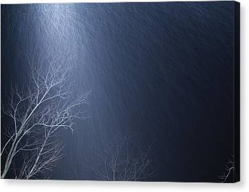 The Tree Under The Snowfall Canvas Print