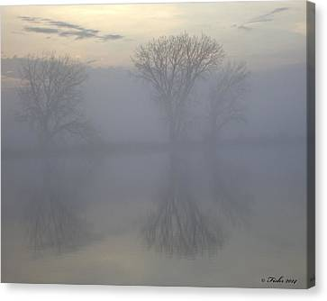 The Trees Of Avalon Canvas Print