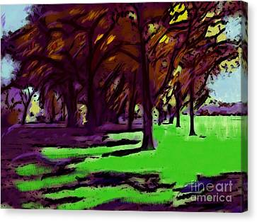 The Trees Canvas Print by Susan Townsend