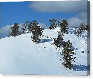 Canvas Print featuring the photograph The Trees Take A Snow Day by Michele Myers
