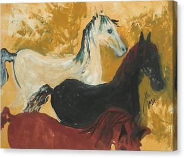 Bay Horse Canvas Print - The Trio by Cori Solomon