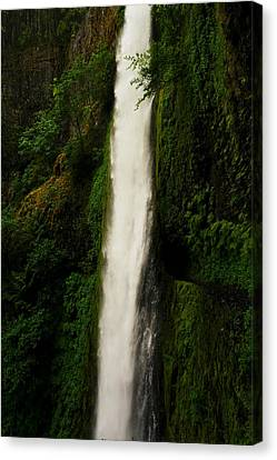 The Tunnel Behind Tunnels Falls Canvas Print by Jeff Swan
