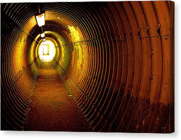 The Tunnel Canvas Print by Theresa Tahara