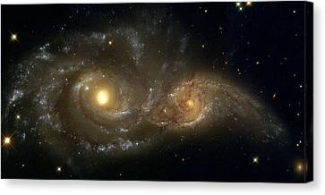 The Twin Galaxies Ngc 2207 And Ic 2163 Canvas Print by Celestial Images