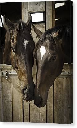The Two Of Us Canvas Print by Lesley Rigg