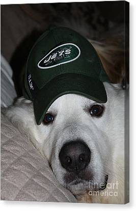 The Ultimate Ny Jet Fan After A Loss Canvas Print