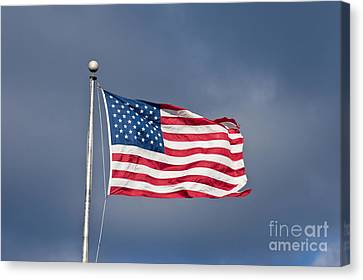 The United States Of America Canvas Print by Benjamin Reed