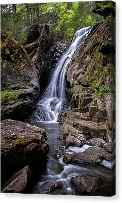 The Upper Cascades Of Campbell Falls Canvas Print by Thomas Schoeller
