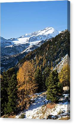 High Park Fire Canvas Print - The Upper Valley Martelltal In Fall by Martin Zwick