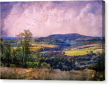 The Valley Canvas Print by John Rivera