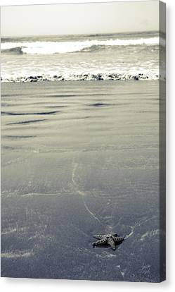 The Vastness Of The Sea Canvas Print by Lisa Knechtel