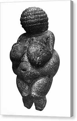The Venus Of Willendorf, Side View Of Female Figurine, Gravettian Culture, Upper Paleolithic Canvas Print by Prehistoric