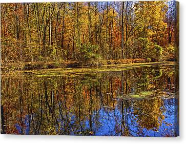The Vibrancy Of Leaves Canvas Print