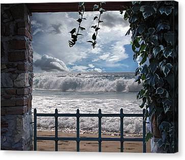 The View Canvas Print by Athala Carole Bruckner