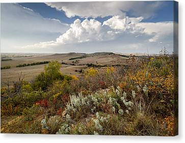 The View From Coronado Heights Canvas Print