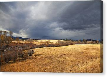 The View From The Side Of The Road Canvas Print