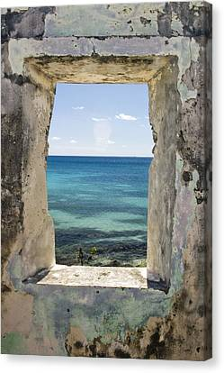 Canvas Print featuring the photograph The View by Heather Green