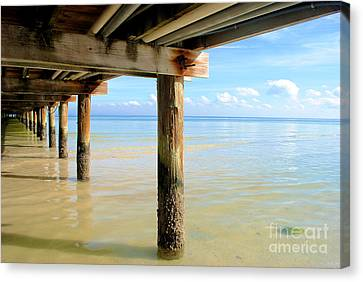 The View Canvas Print by Margie Amberge
