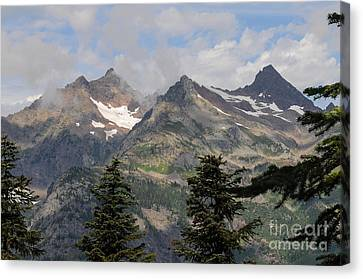the View Canvas Print by Rod Wiens