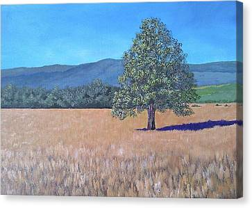 Canvas Print featuring the painting The View by Suzanne Theis