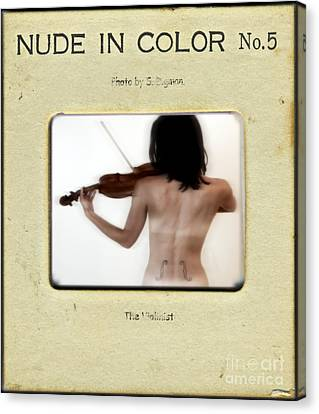 The Violinist  Canvas Print by Steven Digman