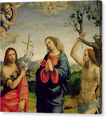 The Virgin With Saints Sebastian And John The Baptist Canvas Print by Timoteo Viti