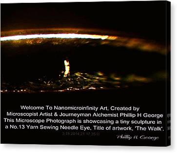 Nanomicroinfinity Jumbo Art Canvas Print - The Walk Info 1  by Phillip H George