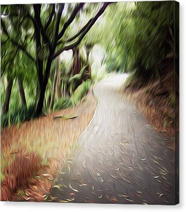 The Walk Canvas Print by Les Cunliffe