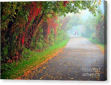 Fall Leaves Canvas Print - The Walk by Terri Gostola