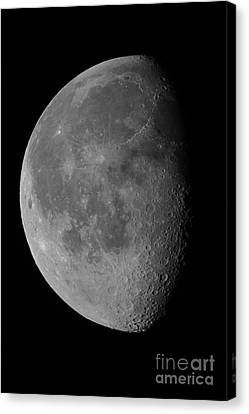 The Waning Gibbous Moon And Lunar Canvas Print by John Chumack