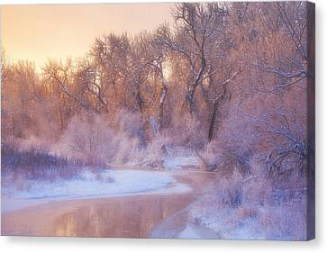 The Warmth Of Winter Canvas Print by Darren  White
