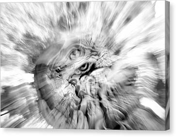 The Warping Eye Canvas Print by Frederico Borges