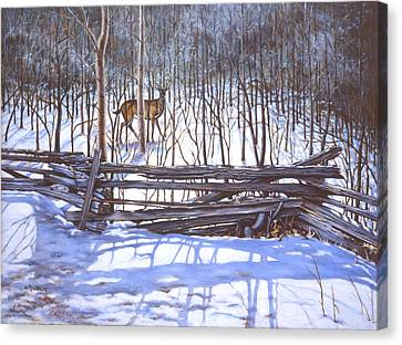 Deer Canvas Print - The Watcher In The Wood by Richard De Wolfe