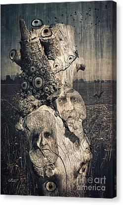 The Watcher Canvas Print by Jutta Maria Pusl