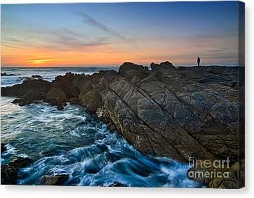 The Watcher - Rocky Asilomar Beach In Monterey Bay. Canvas Print by Jamie Pham