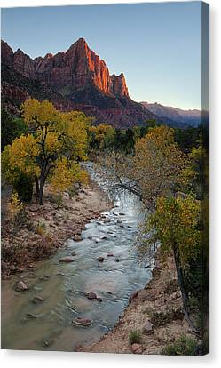 The Watchman At Autumn Canvas Print by Andrew Soundarajan