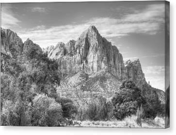 The Watchman Canvas Print by Jeff Cook