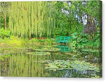 The Water Garden Canvas Print by Olivier Le Queinec